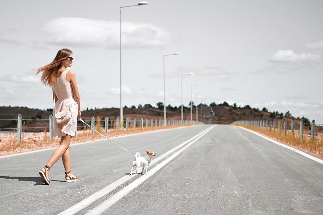 歩行者が事故対策!危険運転から身を守る。どんな時に事故に巻き込まれる